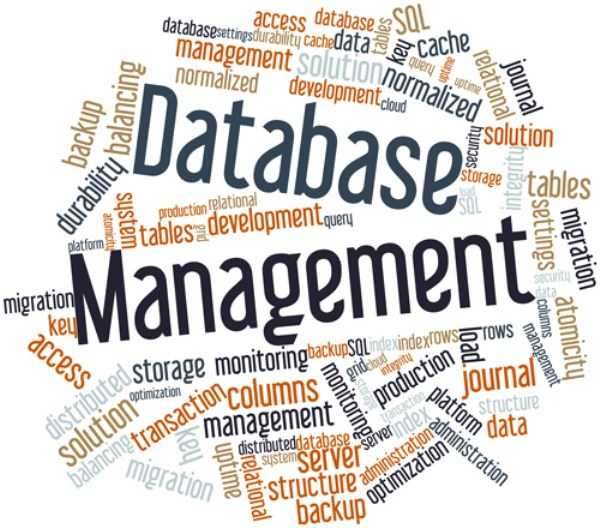 Can I Begin a Database Management Career In Middle Age?